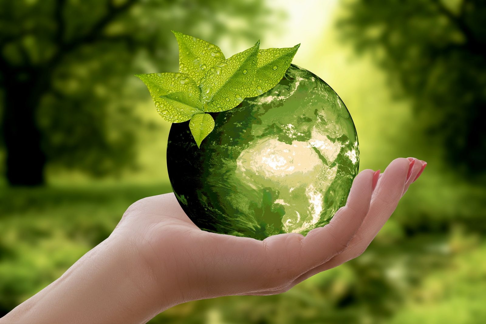 Recycling Services banner image